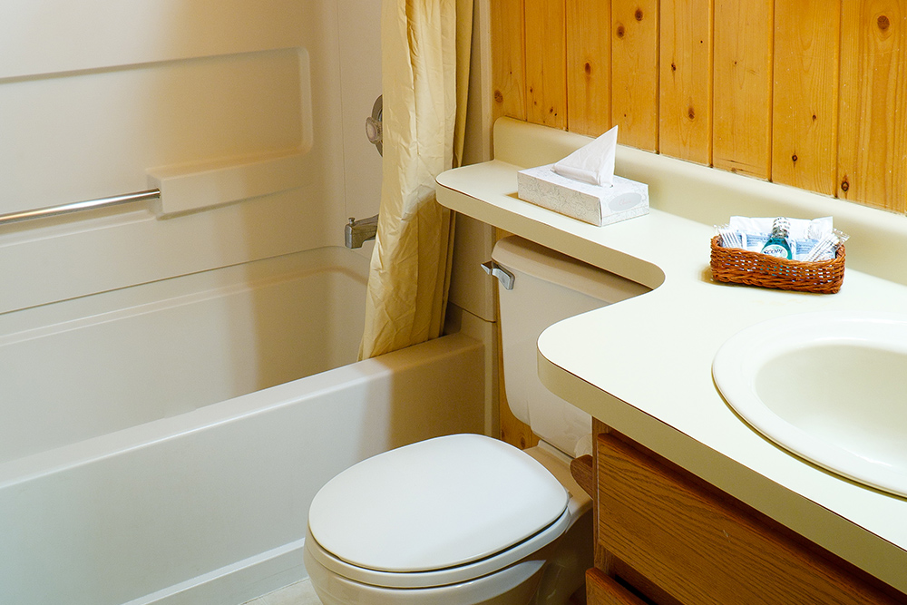 In-Cabin Bathrooms